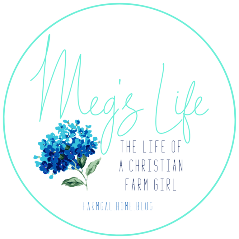 megs-life-button